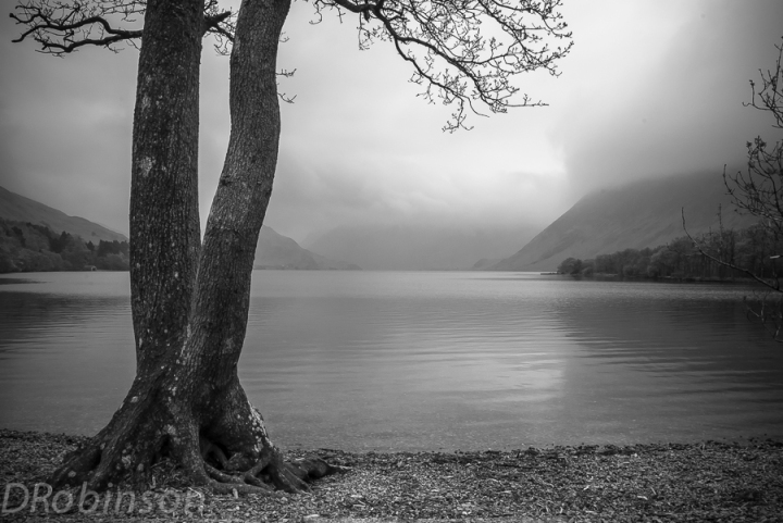 Black and White Lake image