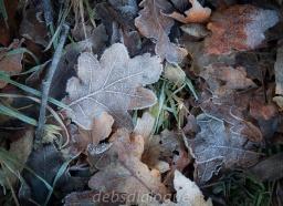 vienna-woods_klosterneuberg-6110
