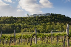 Kahlenberg by C Day