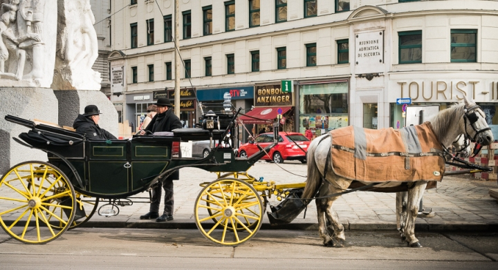 Vienna Horse drawn carriage