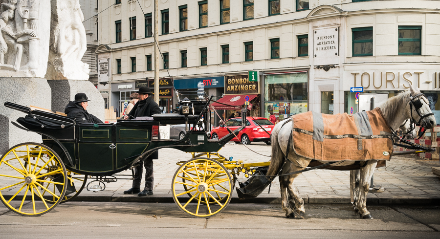 Vienna Horse drawn carriage