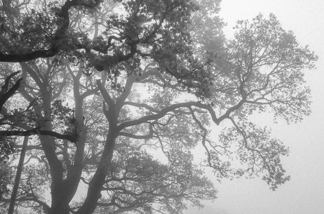 Calm, stillness, solitude